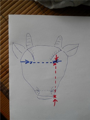 коза 07